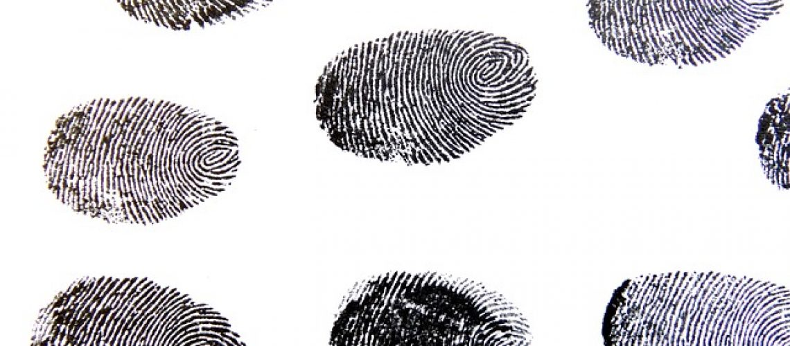 fingerprint-456486_640-pixabay